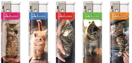 Adamo Cat aanstekers (5 stuks)