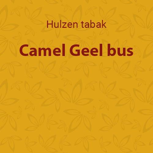 Camel Geel bus