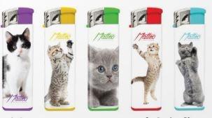 Aansteker met leuke katten (5X)